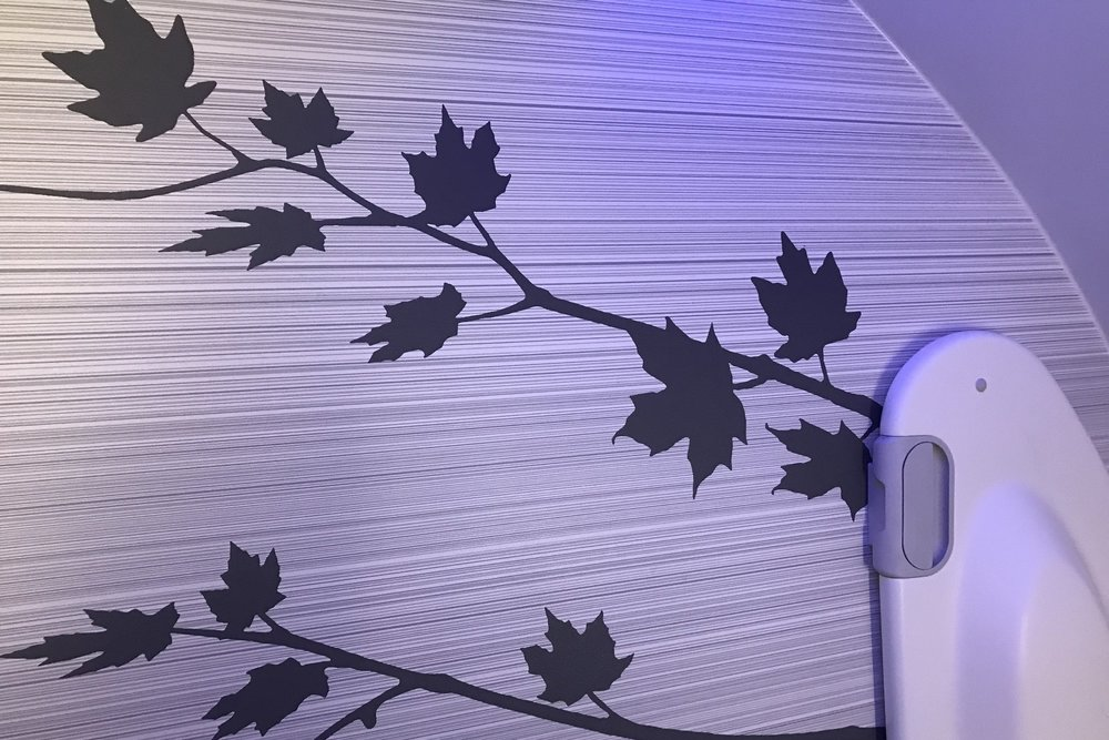 Air Canada business class – Restroom decor