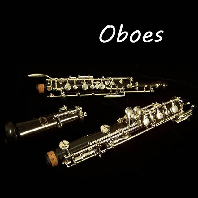 Just 3 weeks left to our first practice, let's learn more about the oboe today! Do you love or hate this unique sound? 🎵🎵 If you are interested to perform with RWinds this year, you can sign up at tinyurl.com/rwinds2019