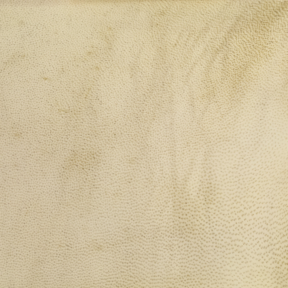 natural GOATSKIN parchment - OFF