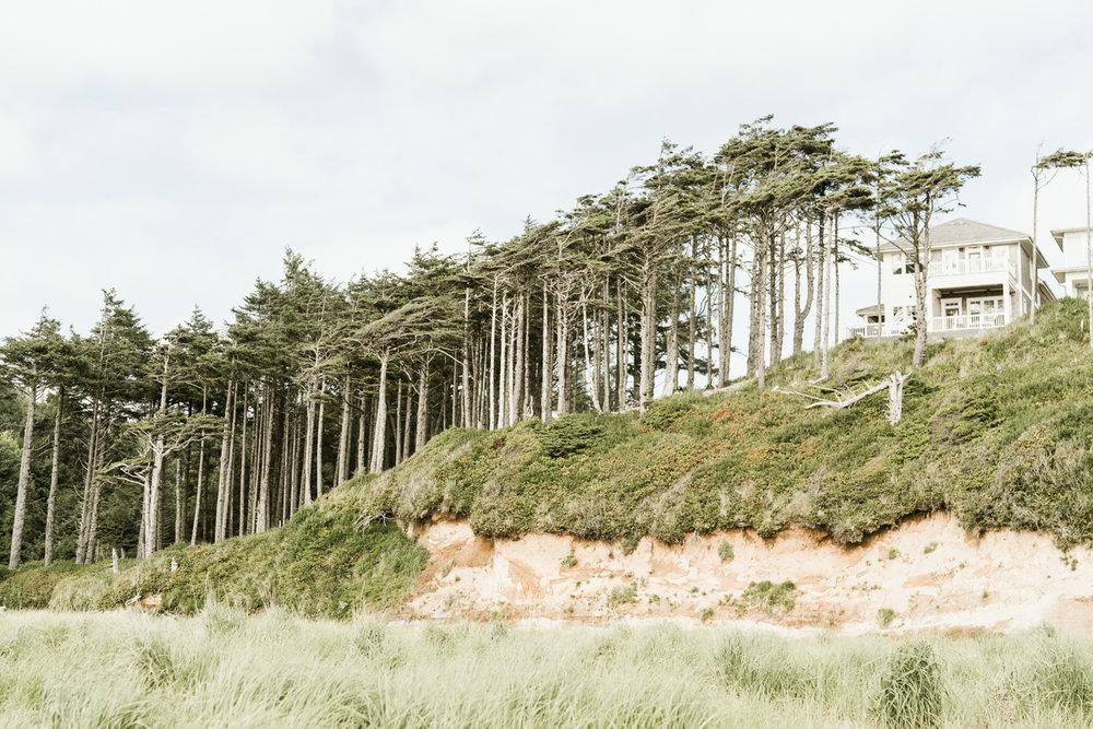 April Yentas Photography - Seabrook Shoot-86.jpg