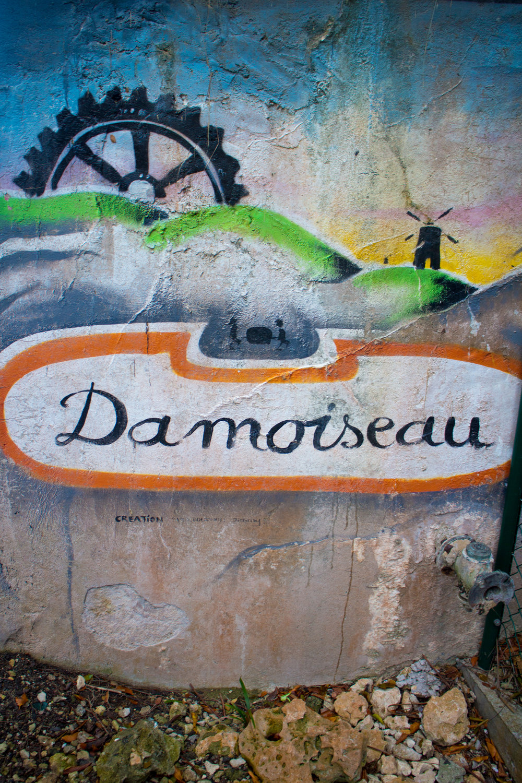 Damoiseau logo in mural