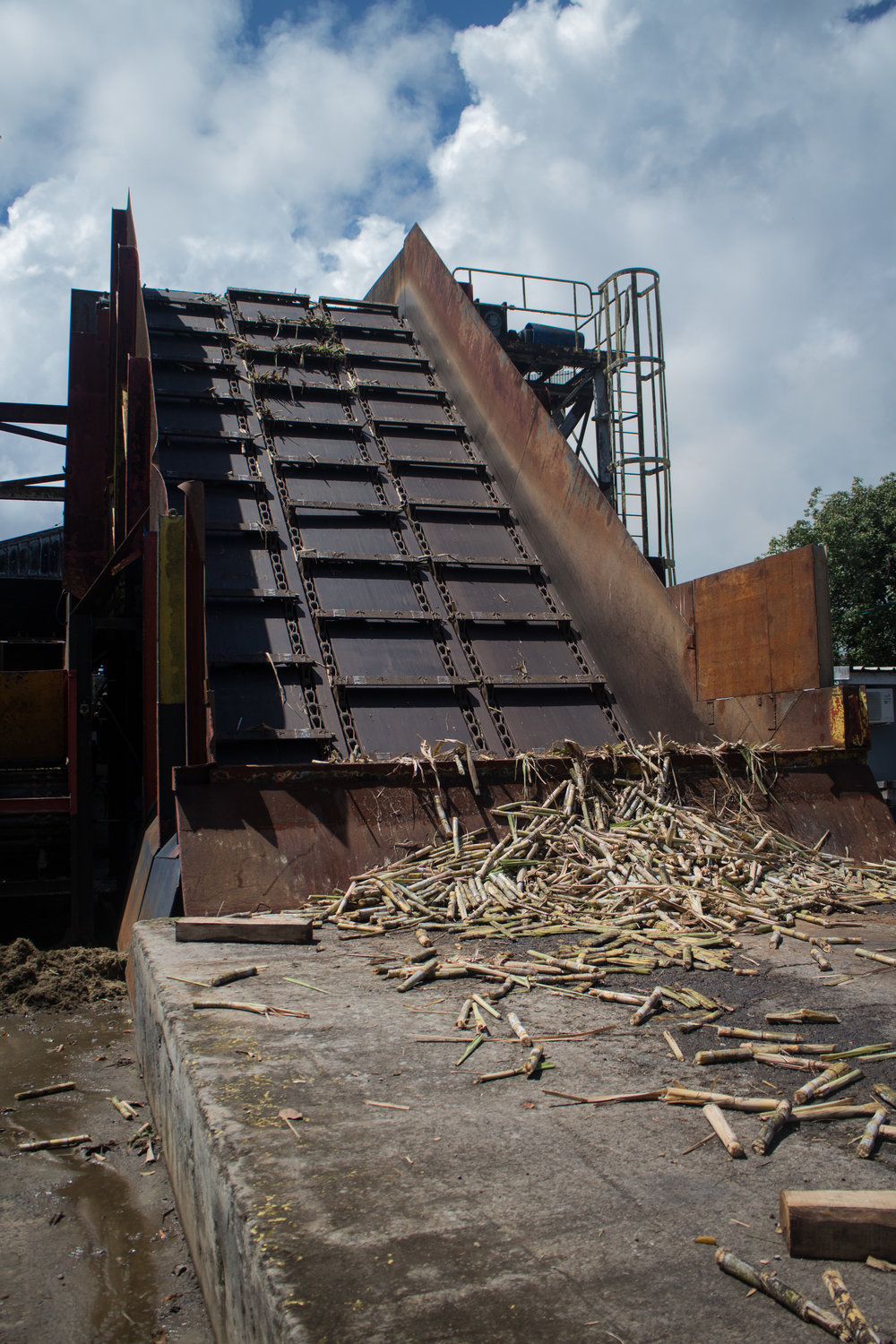 Cane crusher conveyance at rest