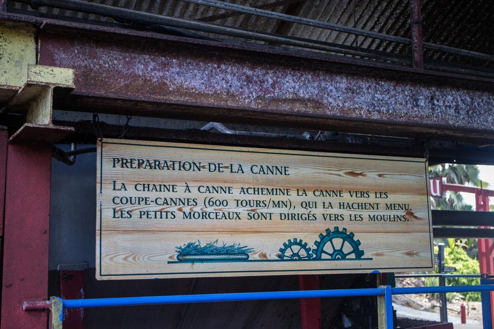 Cane Preperation