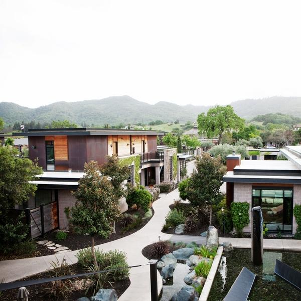 Napa Valley, CA, USA -