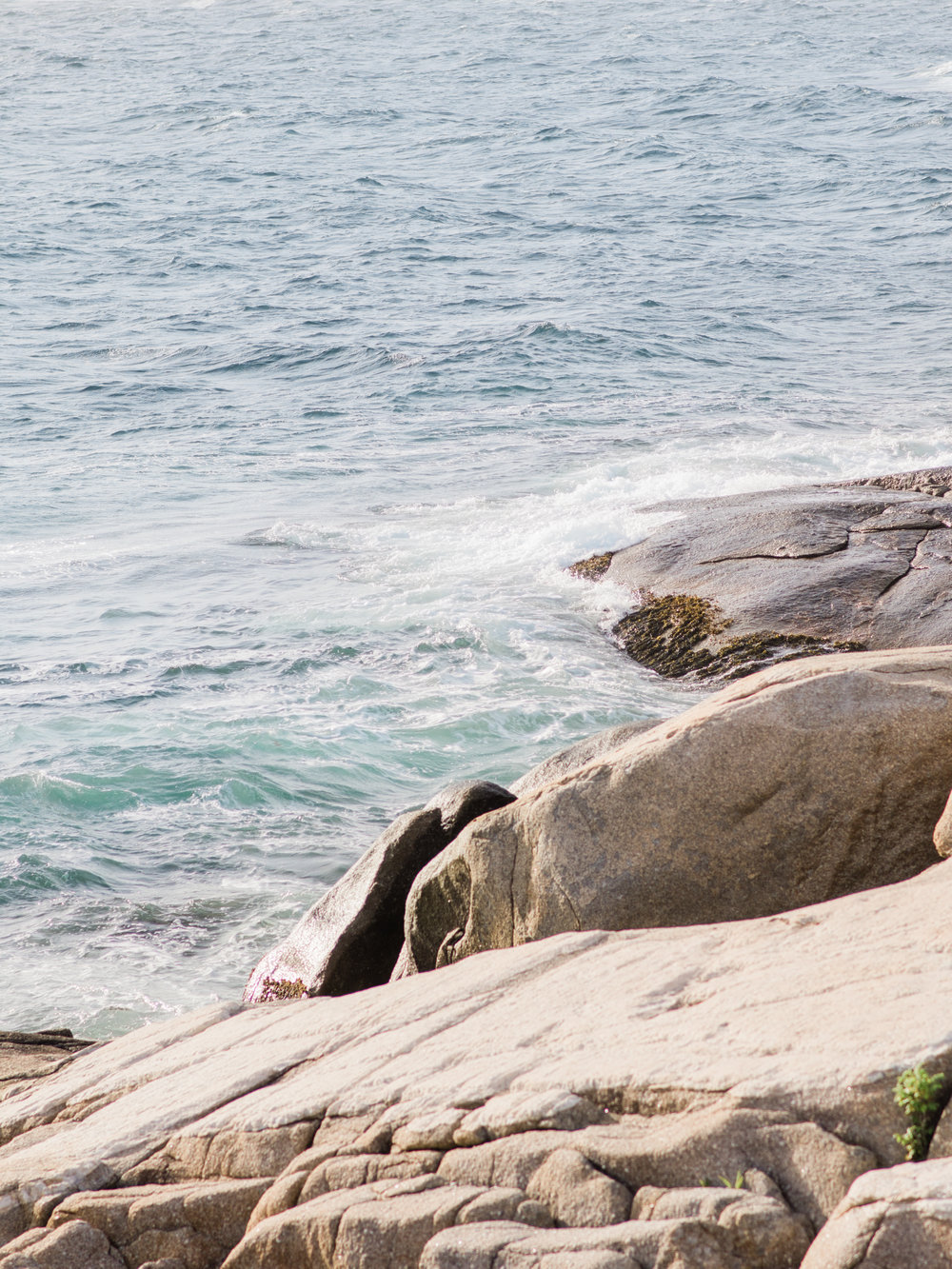 Jacqueline Anne Photography - Alex and Andrew Engagement at Peggy's Cove - Halifax-1.jpg