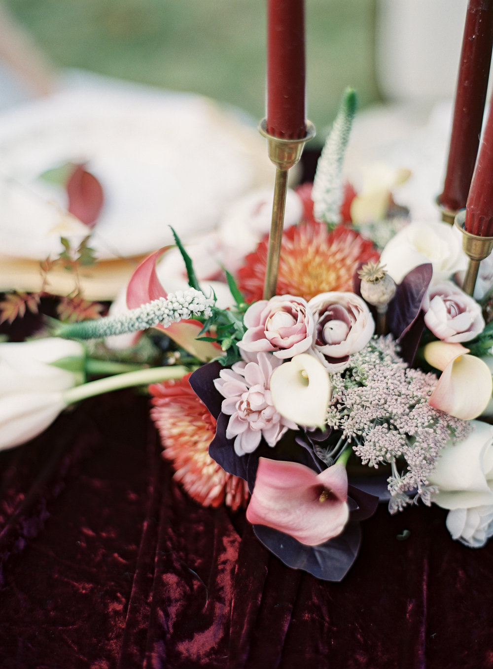 Jacqueline Anne Photography - Forest Editorial - Autumn editorial ON FILM-36.jpg