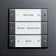 Gira Push button 3