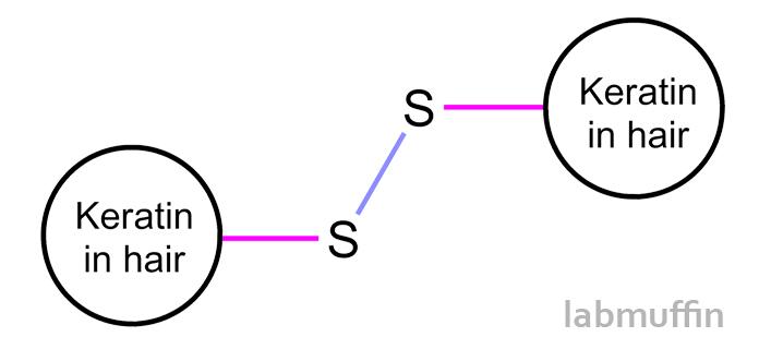 keratindisulfide.jpg