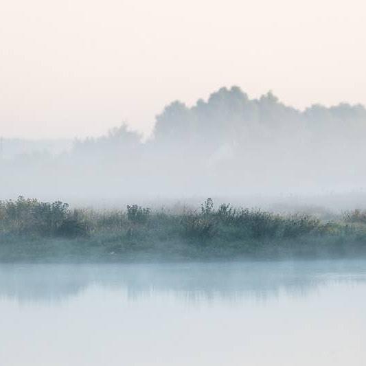 Marais du Crotoy - Le 03 Août 2018 #BaiedeSomme  @festivaloiseaunature © Festival de l'Oiseau et de la Nature - Baie de Somme  #nature #landscape #paysage #france #somme #baie #tourism #photographie #beauténaturelle