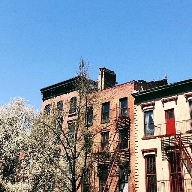 Spring looks good on you, Brooklyn.
