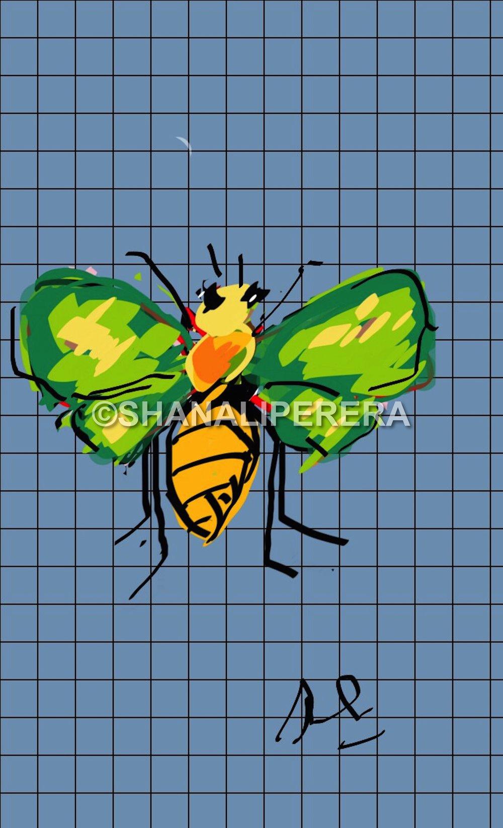 sketch-1433005465066.jpg
