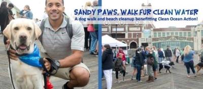 Sandy Paws.jpg