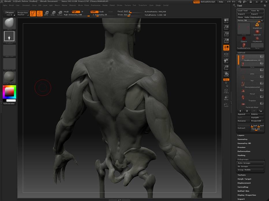 Triceps-Attach_01.jpg