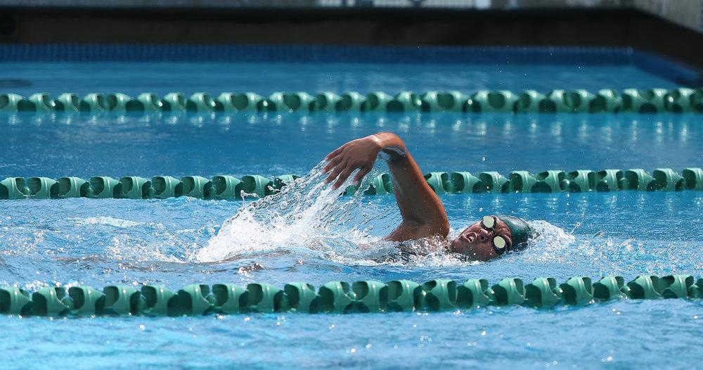 Swimming 8.jpg