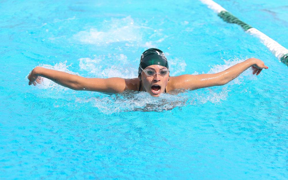Swimming 7.jpg