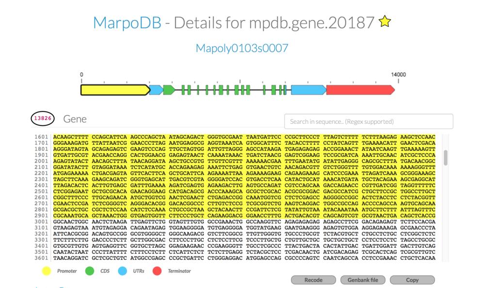 marpodb-EF1a.png