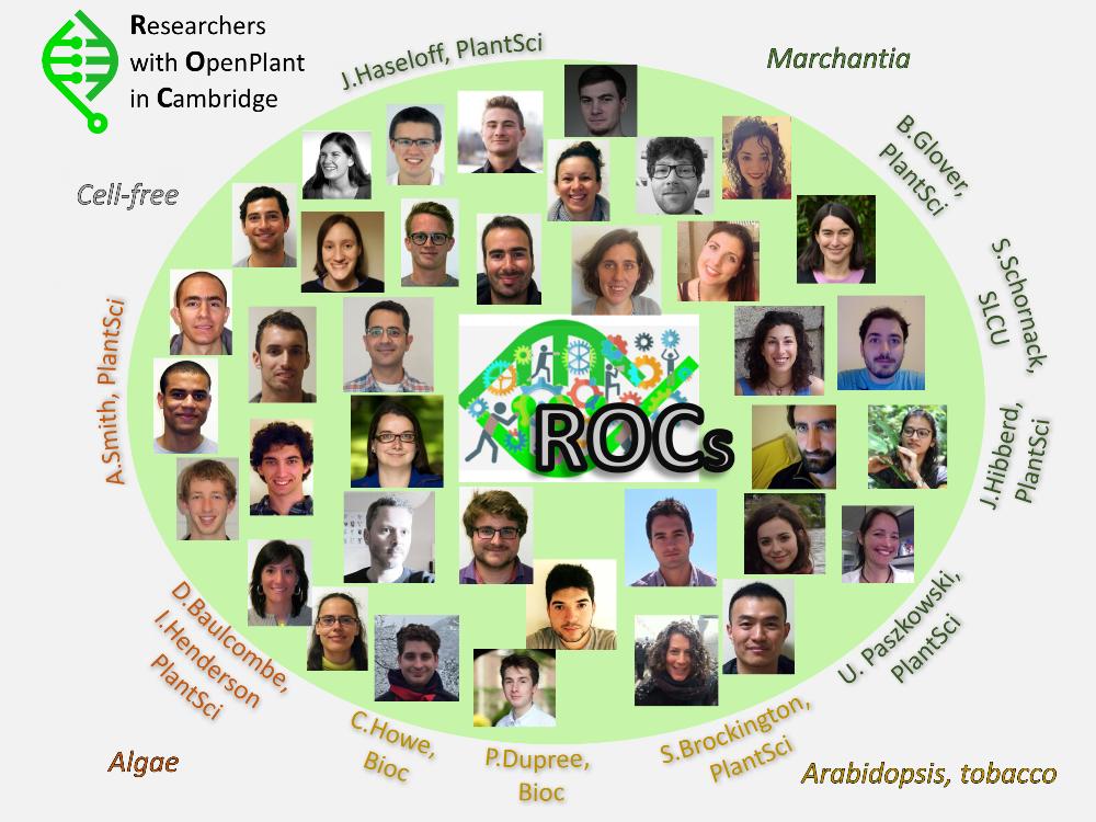 Meet the ROCs