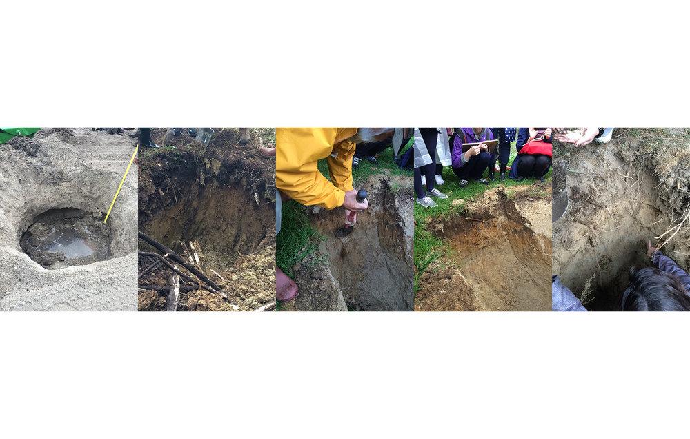 Digging Holes for Soil Profile Observation
