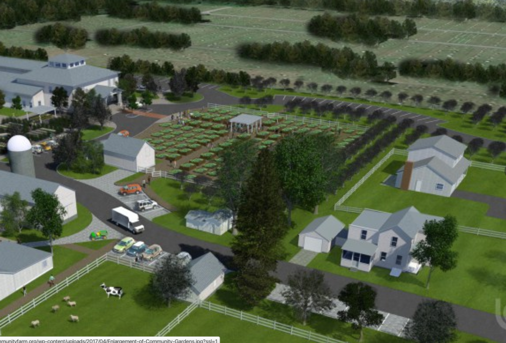 THIS LA Group artist's rendering shows how the community gardens will look when they're built out to their full complement of 200 plots.