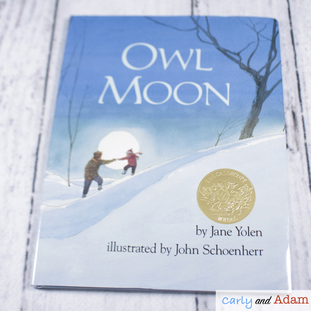 Owl Moon Light and Shadows STEM Activity