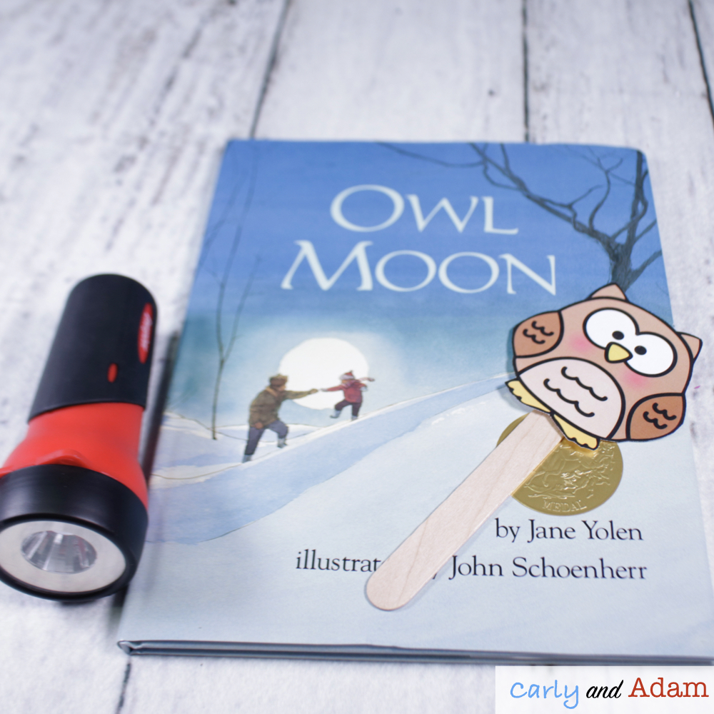 Owl Moon Light and Shadows STEM Activity