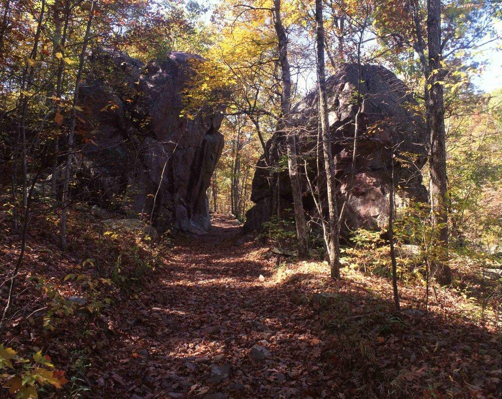 Trail at Taum Sauk