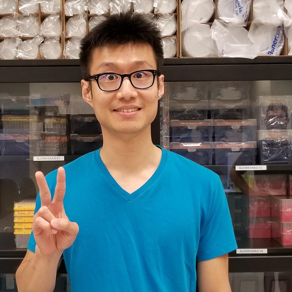 Weelic Chong, B.S. - Rotation Student (2018)