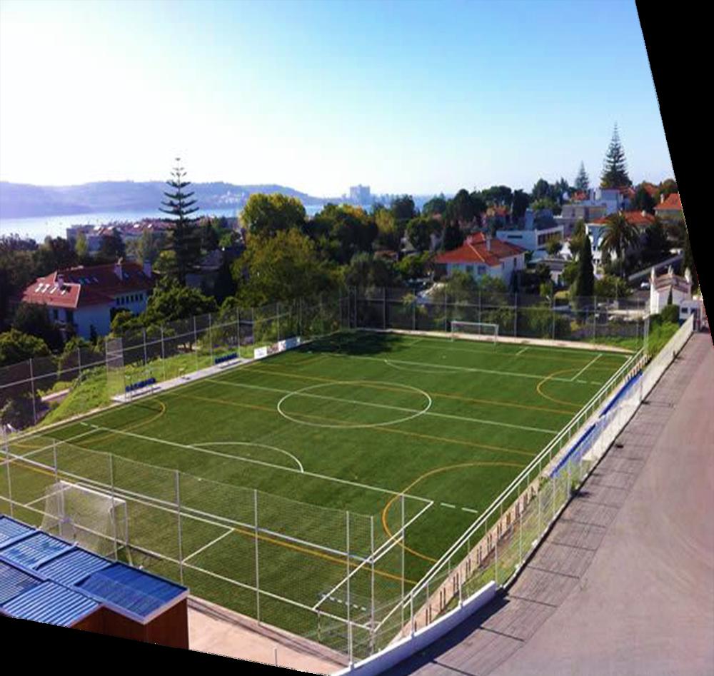 Campo Vicente Lucas