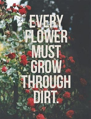dirt quote.jpg