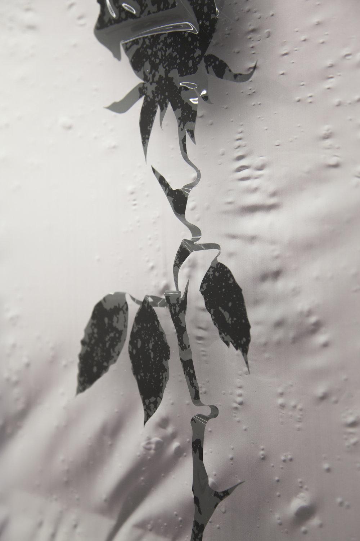 Rose detail-1.jpg