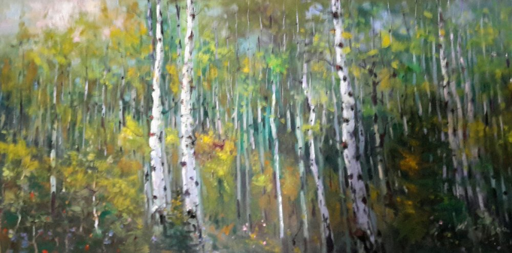 Aspen Wood on Lake Katherine in the Summer, July 18th, 2017,Weiming Zhao