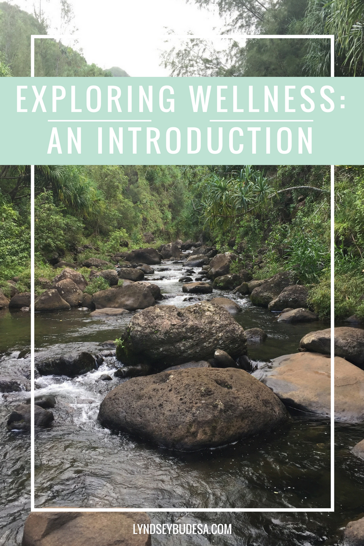 Exploring Wellness: An Introduction | LyndseyBudesa.com