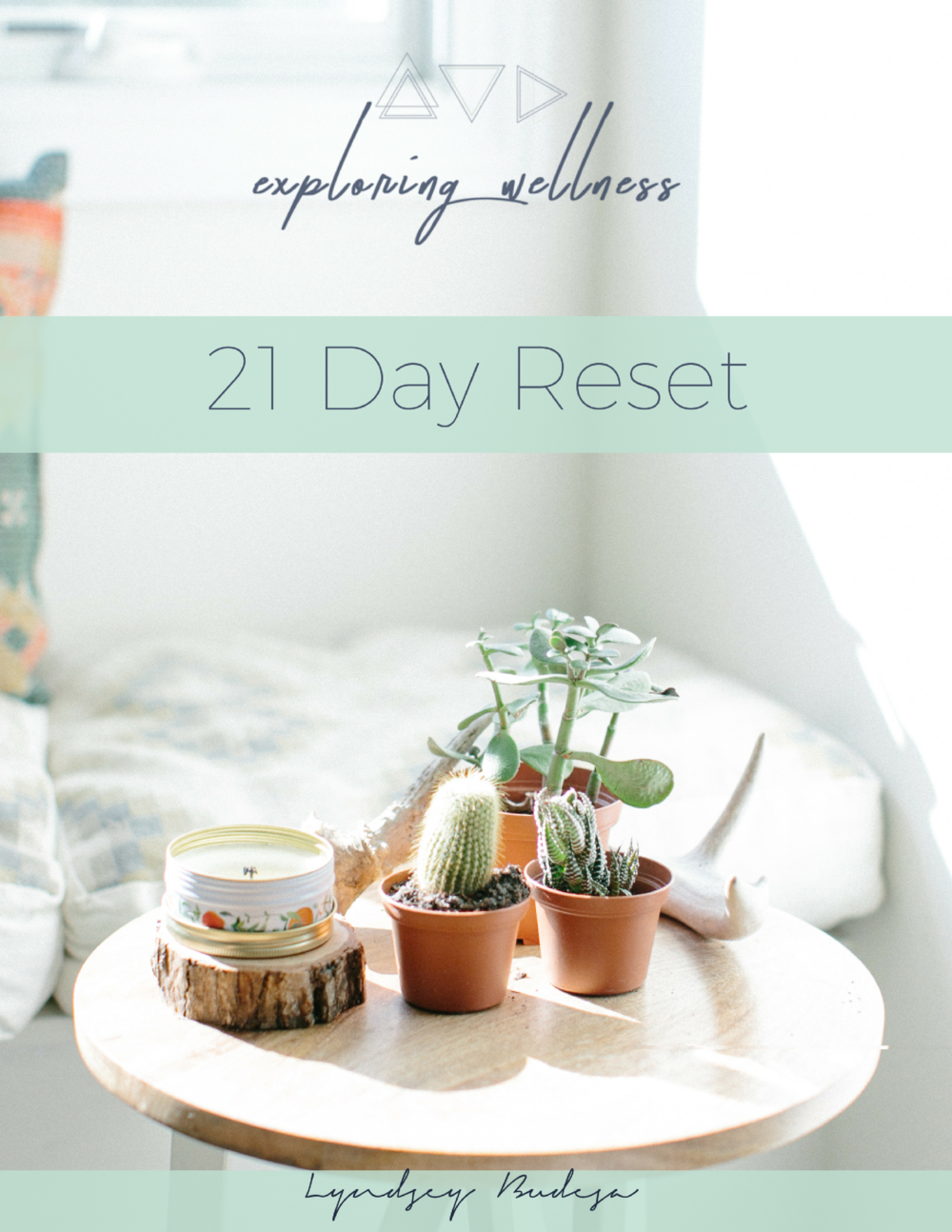 21 Day Reset Cover.png