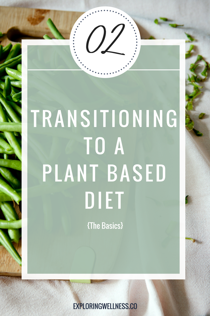 The Ultimate Plant Based Diet 101 Guide | Exploring Wellness | Lyndsey Budesa | Certified Holistic Health Coach