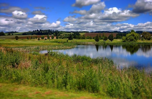 @quailvalleygolf #whyiplaygolf #golf #golfcourse #scenery #sky #surroundings #green #grass #pond #nature #oregongolf #pnw #banksoregon #oregon #lgg6