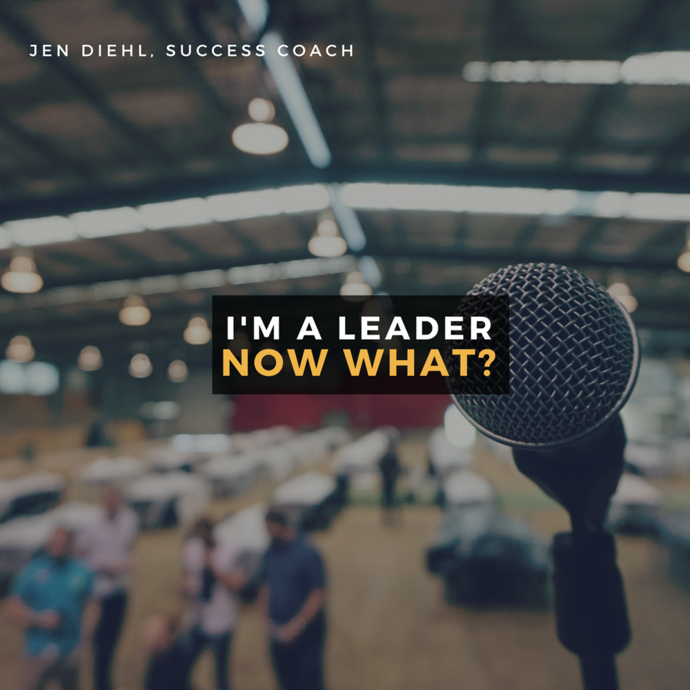 "How amazing would it be to work with an engaging and happy team? ""I'm a Leader…Now What"" is a program that brings these two necessary questions to reality in 6 weeks.  Click here to learn more!"
