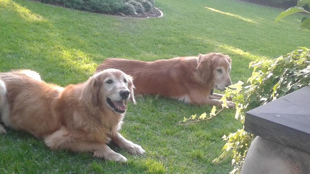 Hunter and Bailey.jpg •.jpg