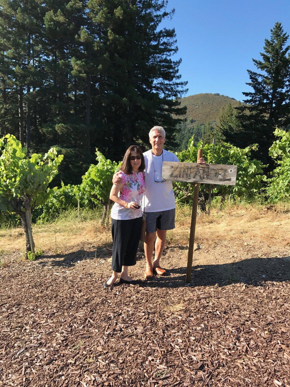 Cecile & Me Zinfandel vineyard.jpg 10 *.jpg