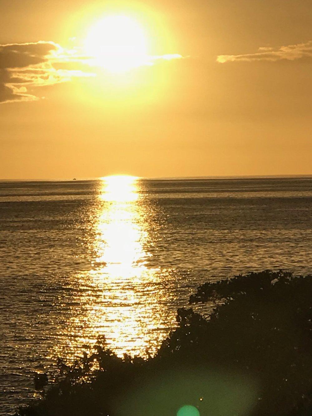 Yellow Sunset MG_4266.jpg