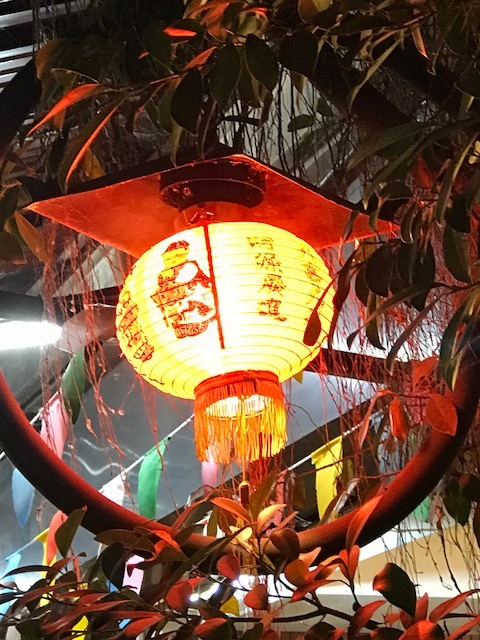 Chinese Lantern Siem Reap.jpg