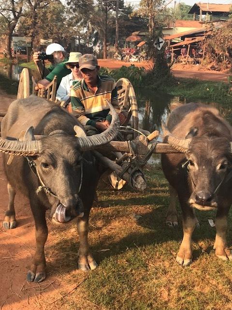 Buffalo cart with Jerry & Eileen.jpg*.jpg