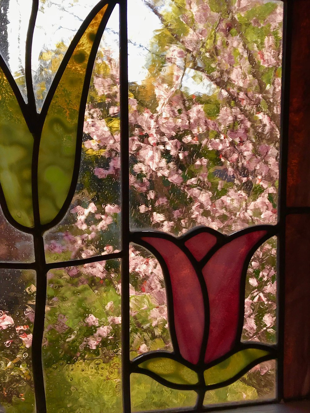 Cherry Blossom stain glass window.jpg*.jpg