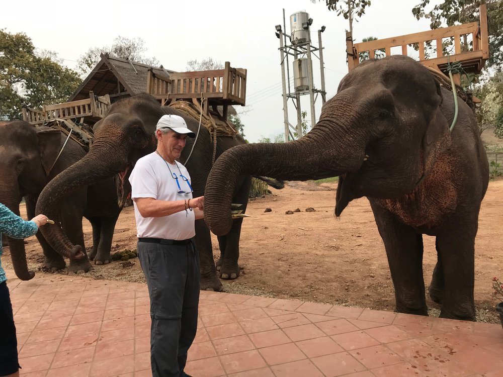 Den Feeding elephant 1.jpg*.jpg