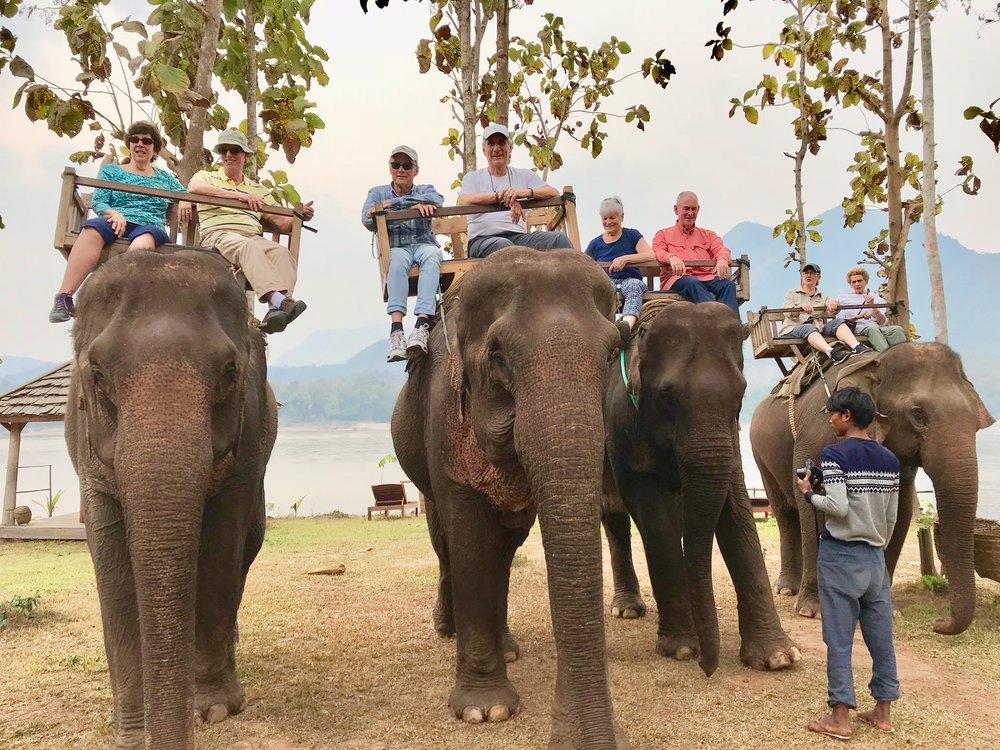 4 elephants w us back to campsite.jpg*.jpg