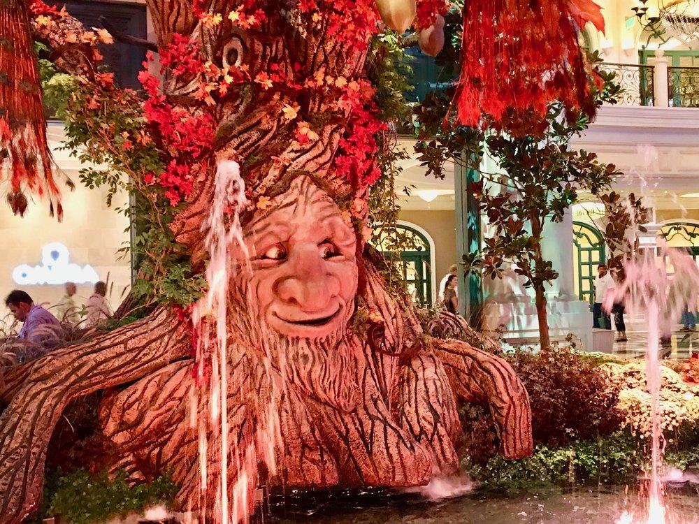 The Talking Tree w Big Eyes.jpg*.jpg
