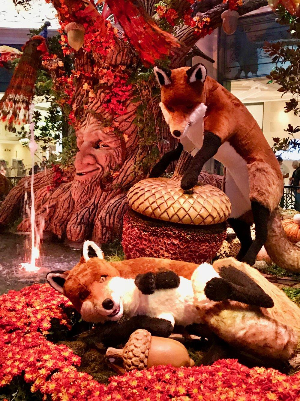 The Foxes .jpg*.jpg