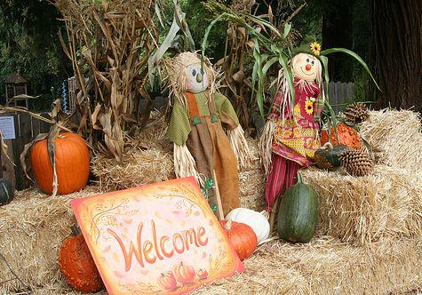 Harvest Faire -