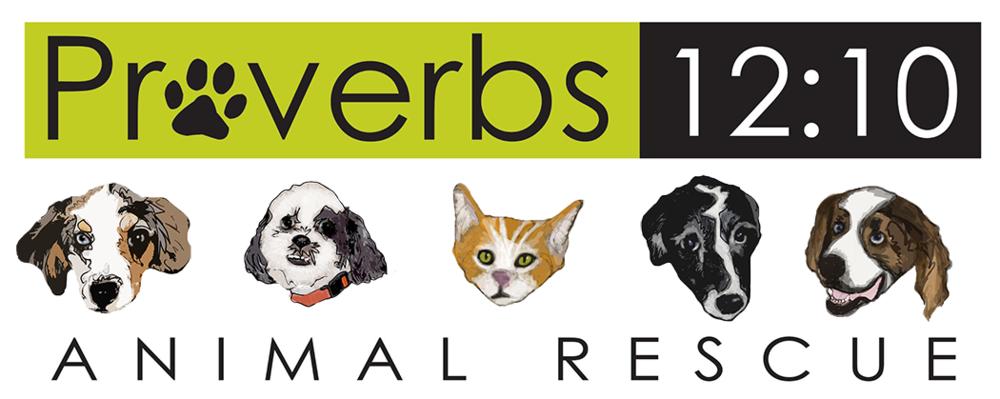 logo-proverbs1210.png