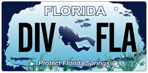 Protect Florida Springs