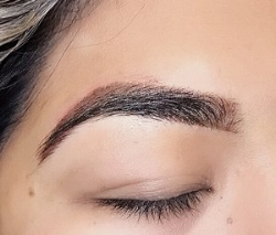 Soft Powder Ombre Brows (no hair strokes)